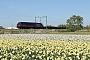 """GE TLMGE 004 - HHPI """"29008"""" 16.04.2014 Noordwijkerhout [NL] Rens Bloom"""