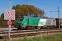 """Alstom ? - SNCF """"475116"""" 19.10.2012 Bantzenheim [F] Vincent Torterotot"""