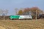 """Alstom ? - SNCF """"475123"""" 03.11.2018 Bantzenheim [F] Vincent Torterotot"""