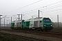 """Alstom ? - SNCF """"475430"""" 19.11.2011 Dunkerque [F] Nicolas Beyaert"""