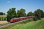"""Bombardier 35004 - DB Regio """"245 005"""" 08.08.2016 Stetten [D] Henk Zwoferink"""